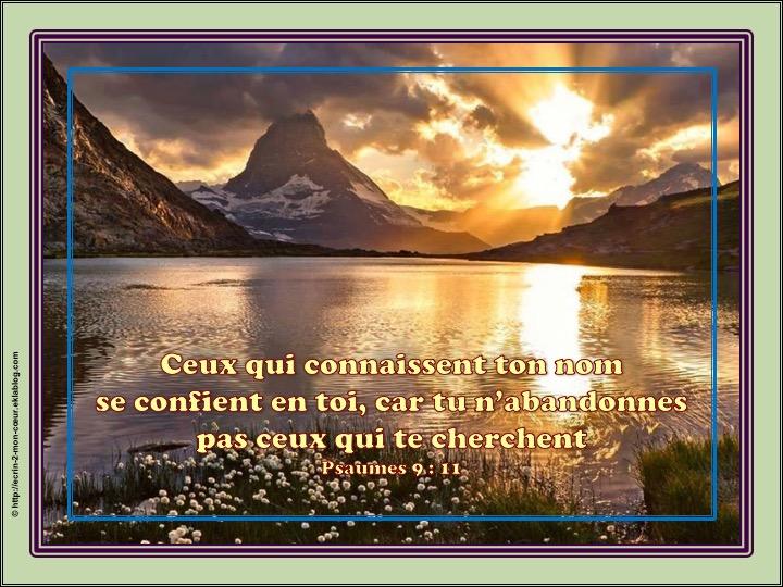 Tu n'abandonnes pas ceux qui te cherchent - Psaumes 9 : 11