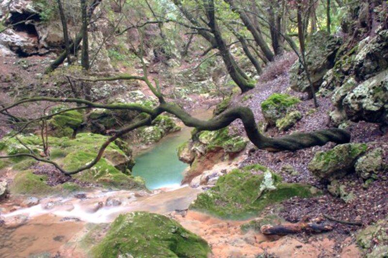 Majorque - la cascade salt des freu