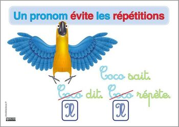 Tikis : le pronom, affiches et carte mentale