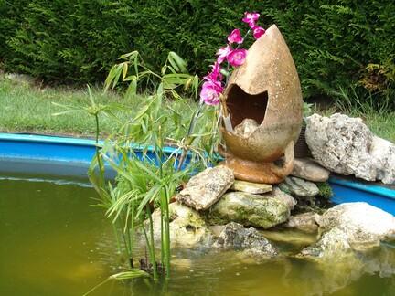 Ma piscine ...........en bassin poissons