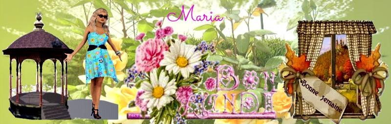 merci Maria