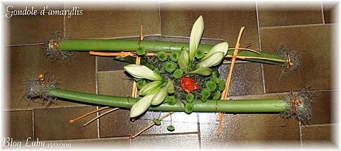 2011 15 02 gondole amaryllis 1