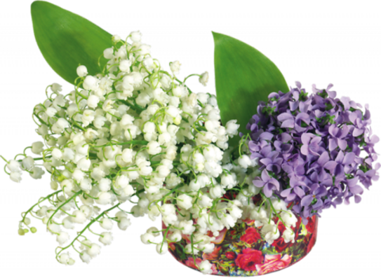 Compositions Florales Muguet