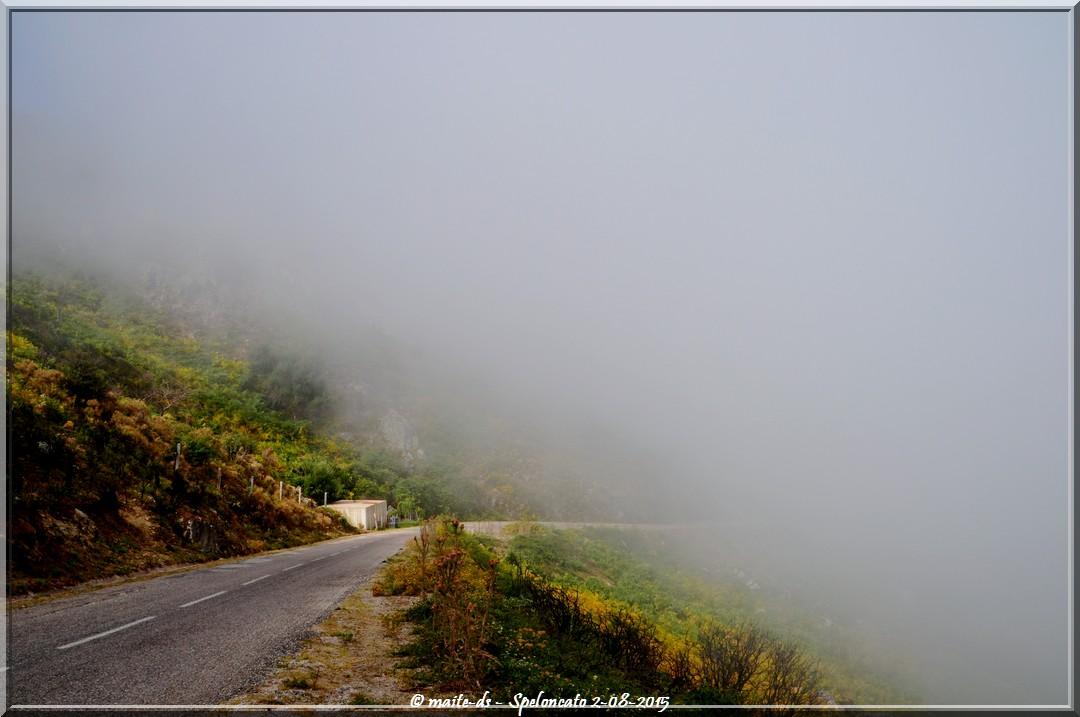 Speloncato sous la brume d'août