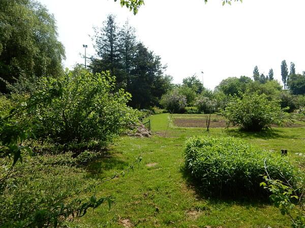 Promenade au jardin Jean Massart