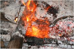 Les cendres de bois, une ressource inépuisable !