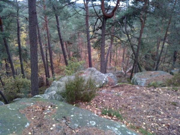 Sentier-Denecourt-10.jpg