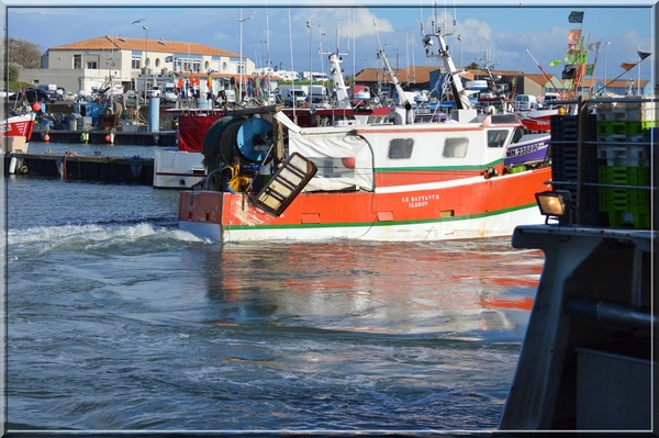 Le Port de la Cotinière 2