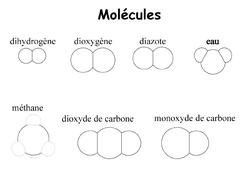 5 Atomes, constituants des molécules