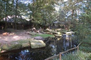 dierenpark emmen d50 066