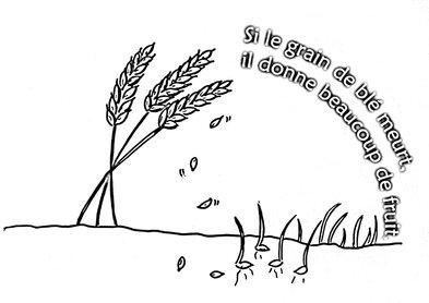 """Résultat de recherche d'images pour """"Si le grain de blé tombé en terre meurt, il porte beaucoup de fruit"""""""