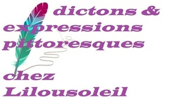 Les expressions ou citations pittoresques chez Lilou jeudi 8