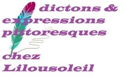 Les expressions pittoresques chez Lilousoleil