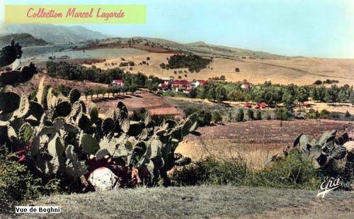 picture of BOGHNI 1933 VUE DE LA ROUTE DE MECHTRAS