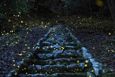 Un escalier qui conduit au rêve ...