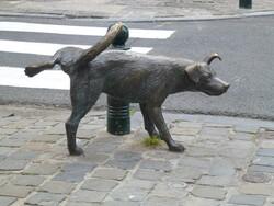 BRUXELLES 15 Août 2013