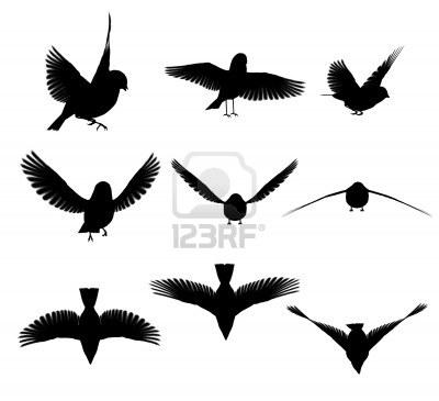 l'oiseau de ciel (  Magritte  )