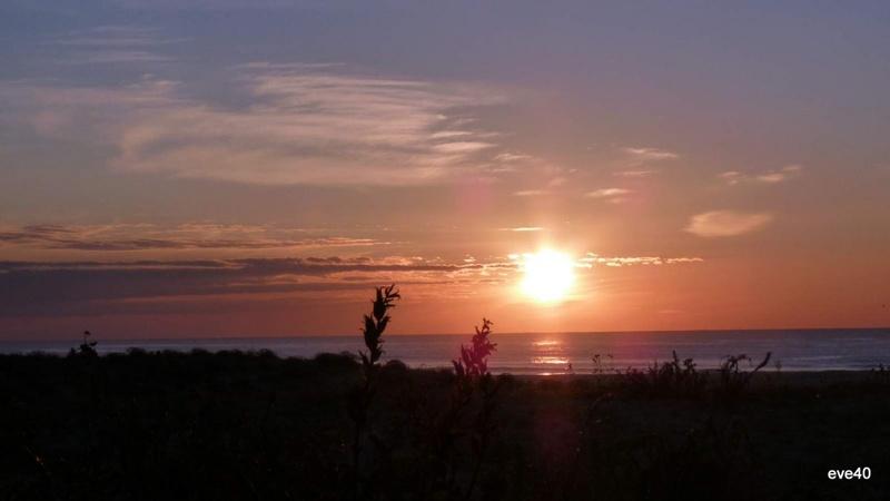Coucher de soleil sur le courant d'Huchet.(Landes)