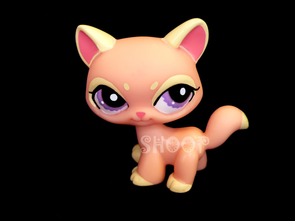 LPS 1265