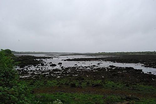 Le Burren 002