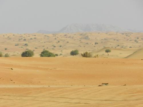 Dubai le retour