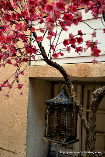2014.03.23 Gassin, Ramatuelle, St-Tropez, Port Grimaud (Département du Var)