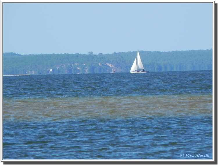 Lac de Carcans-Hourtin-Maubuisson