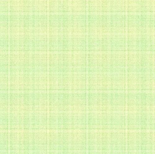 bordures marguerites et vert pastel