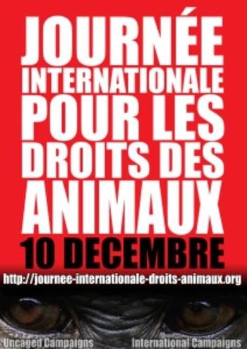 JIDA 2013 Bordeaux 07 12 2013