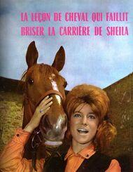 Nous partirons à cheval dans notre forêt...