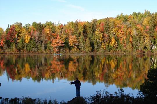 Vive l 39 automne et ses belles couleurs les joies de - L automne et ses couleurs ...
