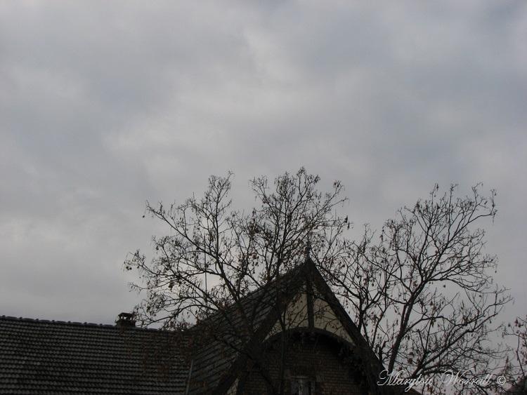 Ciel d'Alsace 390