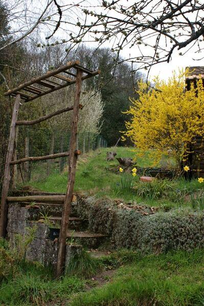 Jardin naturel dans les Vosges du Nord