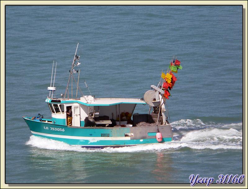 Retour de pêche vu du pont de l'île de Ré - 17