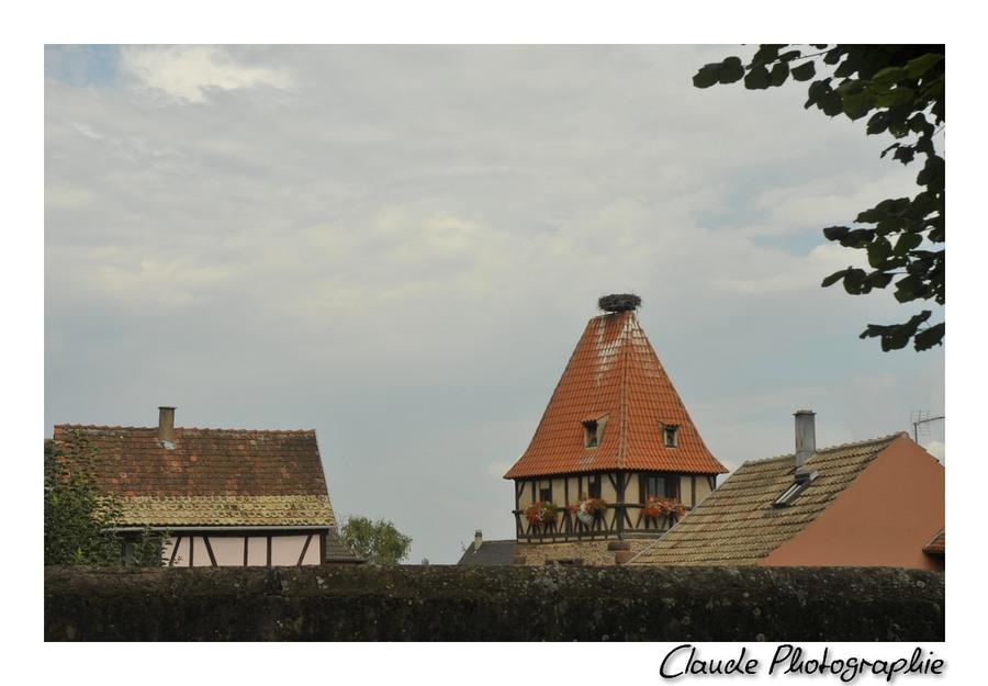 Chatenois - Bas-Rhin - Alsace - 6 Septembre 2014