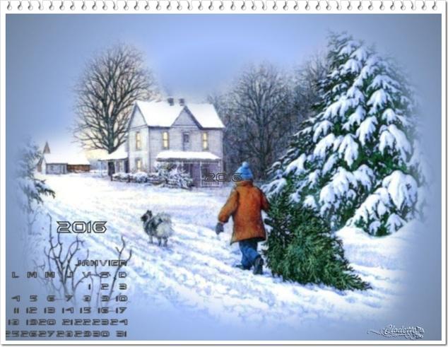 Défis du mois de Janvier