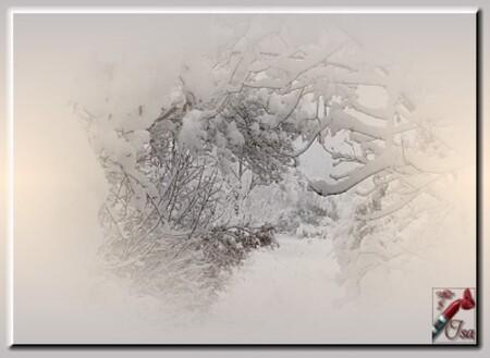 HI0010 - Tube paysage d'hiver