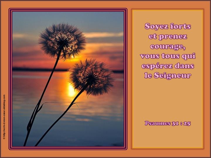 Soyez forts et prenez courage - Psaumes 31 : 25