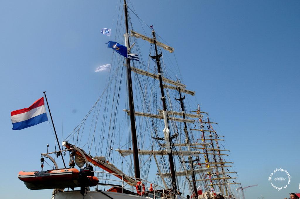 Dunkerque - Sur la route de l'Armada (10)