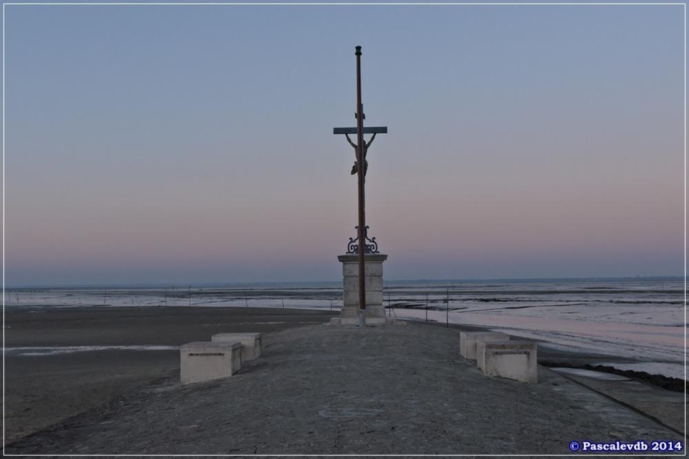 Entre le port de Gujan-Mestras et le port de Larros - 5/5