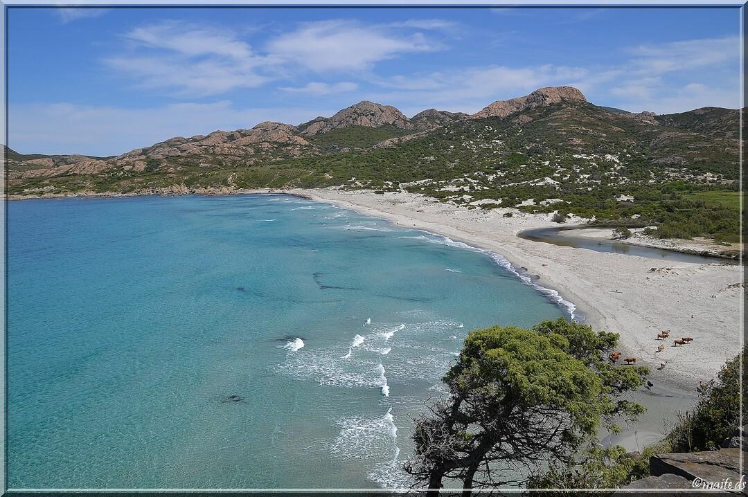 Plage de l'Ostriconi - Corse 16-05-2014