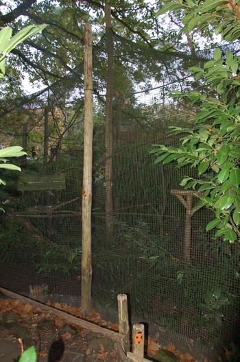 dierenpark amersfoort d50 2011 116