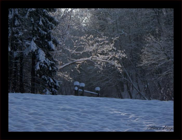 Neige sous le soleil d'Alsace...