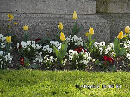 Dimanche-1er-Avril-2012-012.JPG