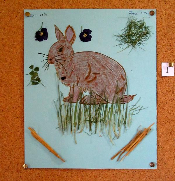 """""""Les animaux de nos forêts"""" ont inspiré petits et grands à la Bibliothèque Municipale de Châtillon sur Seine !"""
