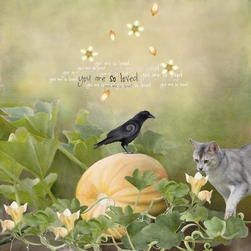 Happy Samhain !!!