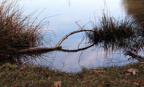 Baraqueville : les reflets du lac