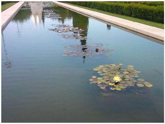 Jardin et fontaine place de l'Empire à Belém .