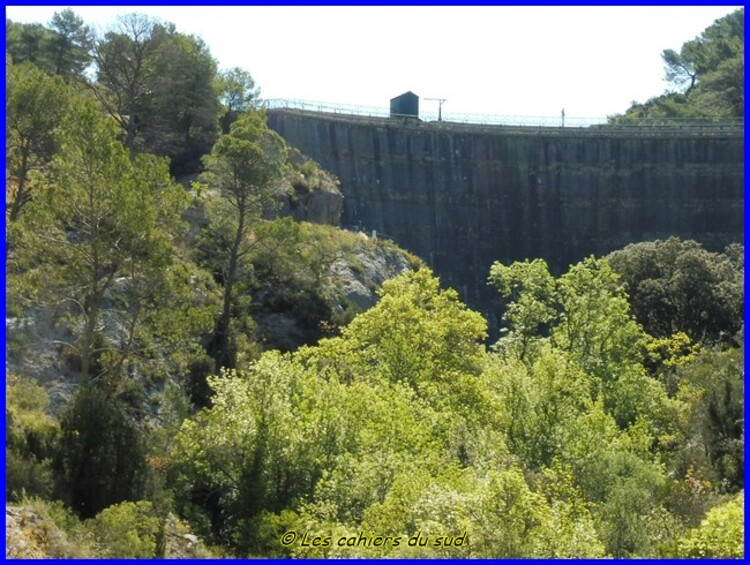 Le barrage Zola et la Cause
