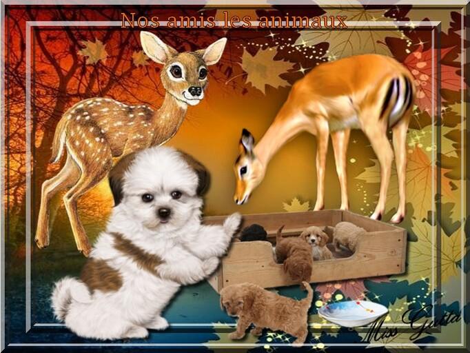 vos créations 2 avec le cluster nos amis les animaux